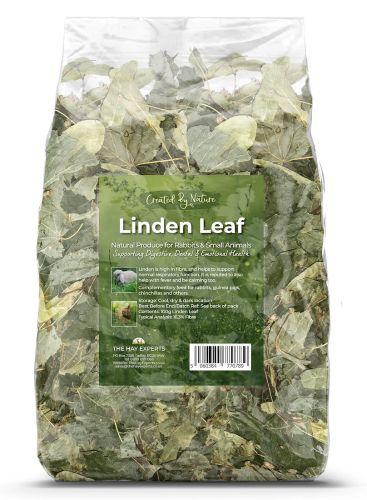 Linden Leaf
