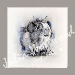 Guinea Pig (Design 1) - Charity Greeting Card