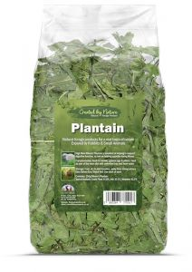 The Hay Experts Plantain