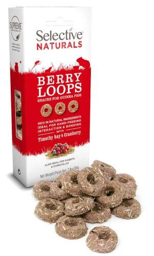 Berry Loops