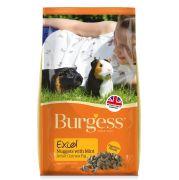 Excel Adult Guinea Pig