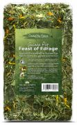 Feast of Forage for Guinea Pigs (1kg)