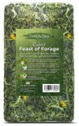 Feast of Forage for Rabbits (1kg)