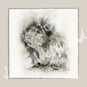 Guinea Pig (Design 2) - Charity Greeting Card