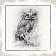 Owl - Greeting Card
