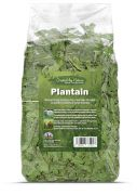 Plantain - The Hay Experts