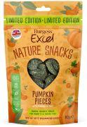 Excel Pumpkin Pieces - Limited Edition