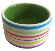 Rainbow Pet Bowl