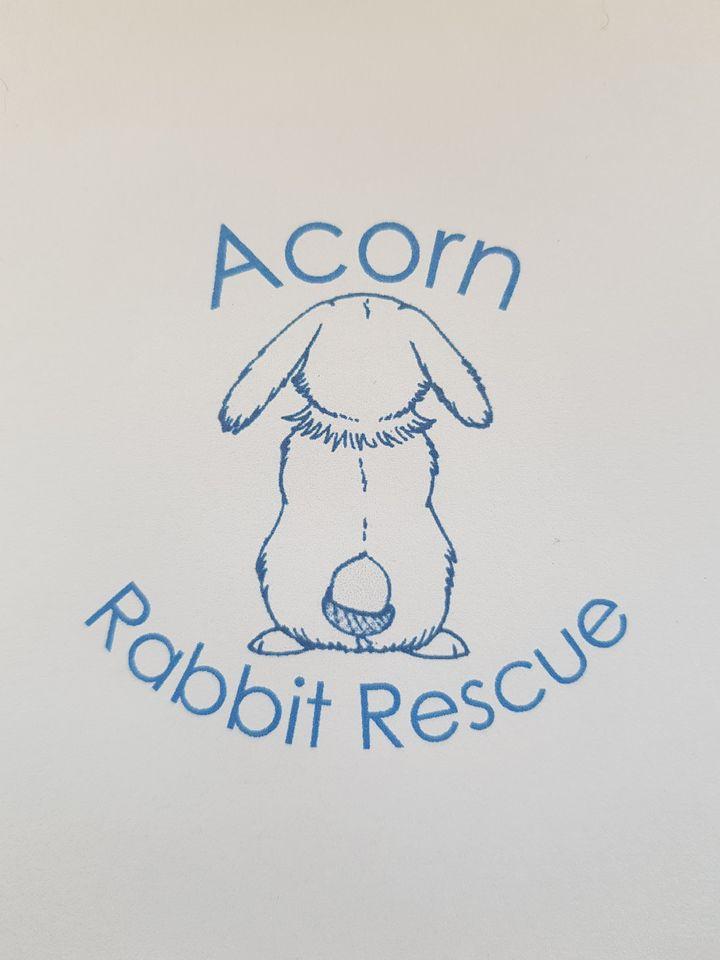 Acorn Rabbit Rescue