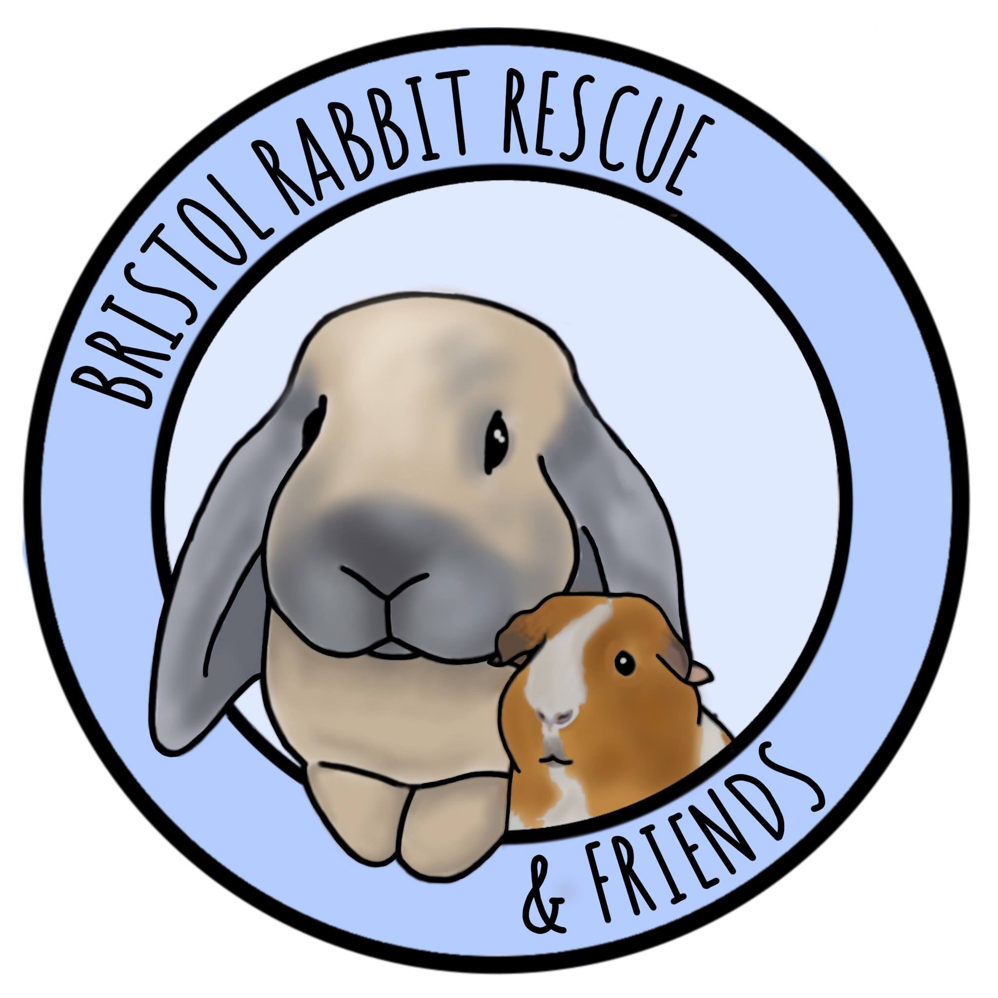 Bristol Rabbit Rescue And Friends
