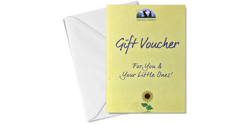 Gift Vouchers - The Perfect Gift!