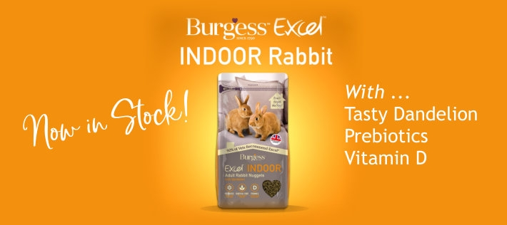 Available Now - Excel Indoor Rabbit with added Vitamin D